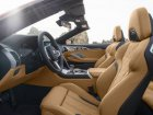 BMW  M8 Convertible  4.4 V8 (600 Hp) xDrive Steptronic