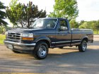 Ford  F-150 IX Regular Cab  5.8 V8 (210 Hp) 4x4 Automatic