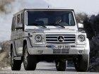 Mercedes-Benz G-class (W463)