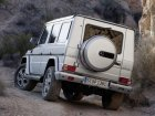 Mercedes-Benz  G-class (W463 facelift 2012)  G 300 CDI (184 Hp) Professional Station