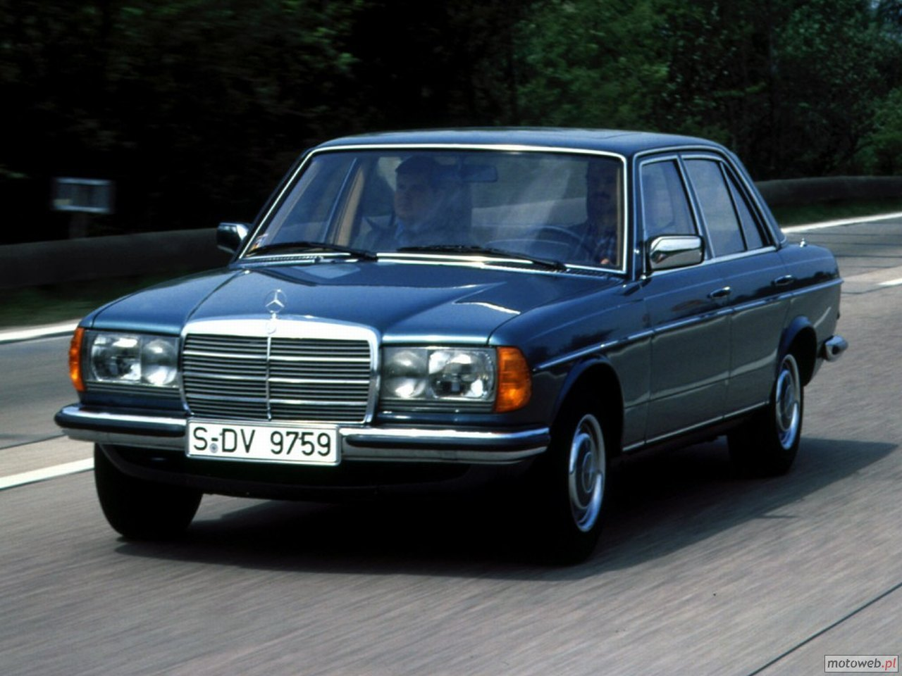 Mercedes benz 250 w123 250 129 hp for Mercedes benz in