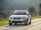 Seat  Ibiza V  1.0 EcoTSI (95 Hp) Start-Stop